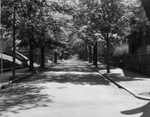 Young Orchard Avenue, Providence, RI