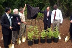 Metasequoia Planting Ceremony