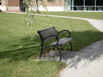 Class of 1984 Gift -- Park Benches by the Pond